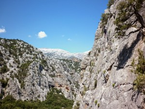 Sardinia_June14 (51)